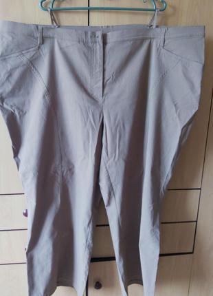 66 размер женские брюки большого размера