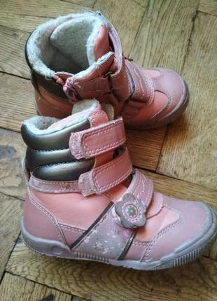Ботинки деми cool club, сапоги, сапожки, чобітки