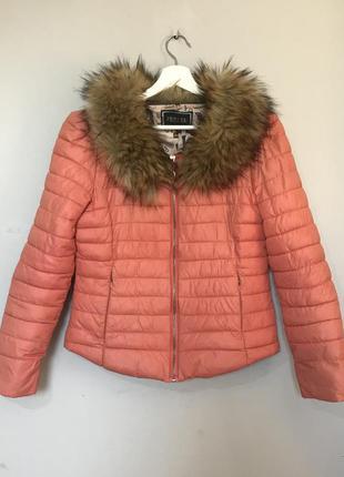 Куртка, пуховик, весна, осінь