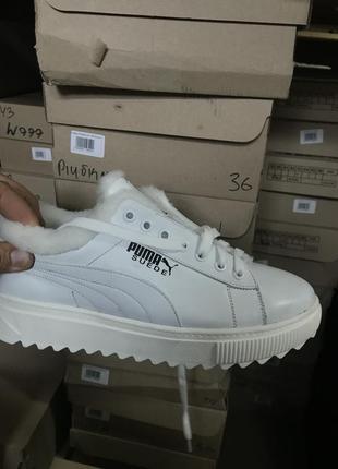 Женские ботинки кожаные зимние белые nev-men p бел
