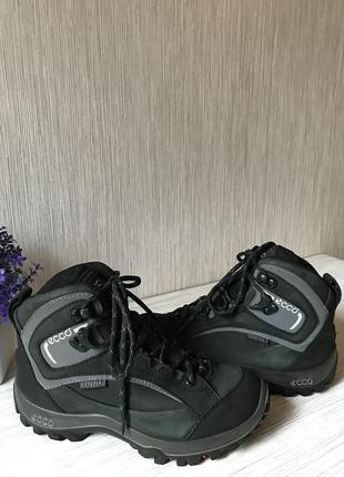Спортивные ботинки ecco