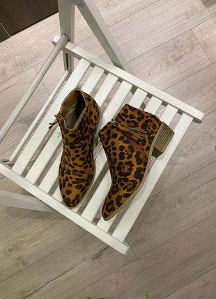 Ботинки ботильоны челси леопардовые
