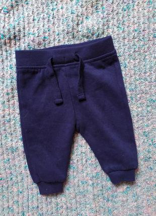 Early days, штаны джоггеры на флисе, на 50-56