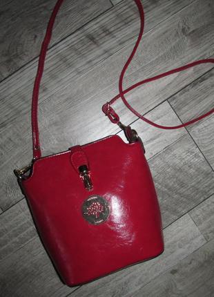 Маленькая сумочка кроссбоди mulberry