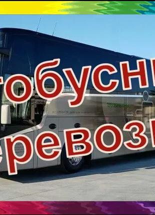 Заказ автобуса/Пассажирские перевозки детей/Автобусные перевозки