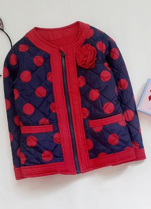 Легкая куртка в горох на девочку, куртка на флисе весна-осень