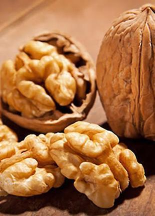 Распродаем по хорошим ценам грецкий орех, урожай 2020