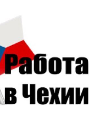 Приглашаю в Чехию на работу