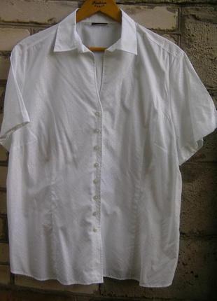 Белая блуза, рубашка большого размера.