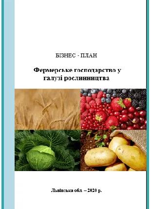 Бизнес-план фермерского хозяйства под заказ