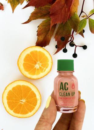 Точечное средство Etude House AC Clean Up Pink Powder