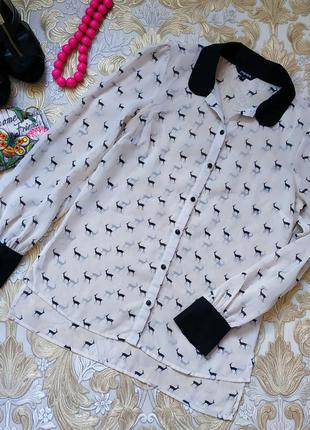Нежная блуза. на бирке- 12 р-р(46)