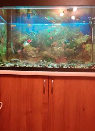 СРОЧНО! Аквариум в полной комплектации (и даже с рыбками).