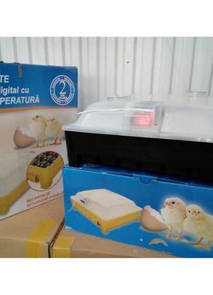 Инкубатор для яиц полуавтомат ASEL электронное поддержка Турция