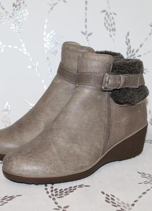 Теплые кожаные ботинки на танкетке от ecco 37 размер 24 см сте...