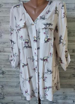 Блуза f&f женская птицы и цветы