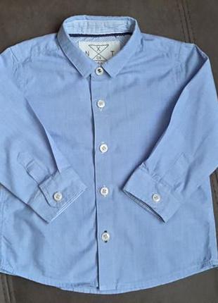 Голубая хлопковая рубашка next