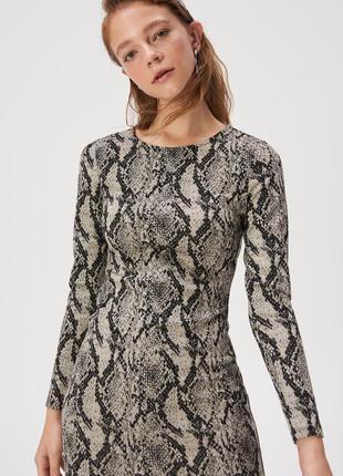 Приталенное платье в актуальный принт
