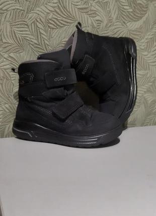 Ecco зимние сапожки ботинки на мальчика