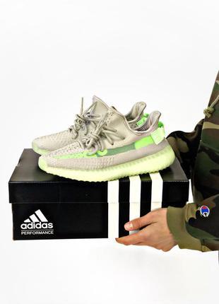 Женские кроссовки adidas yeezy boost 350 grey green