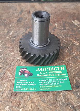 Шестерня привода НШ-10 Д65-1022041-А ЮМЗ