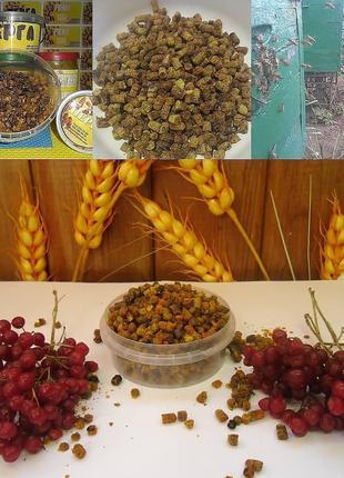 Перга (пчелиный хлеб))