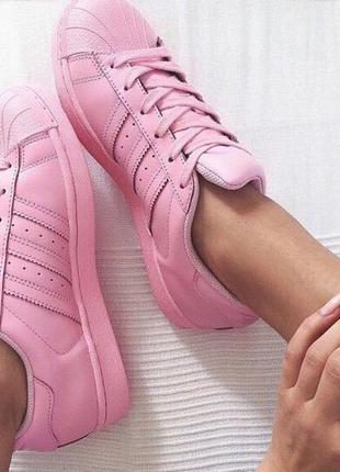 Кроссовки adidas superstar pink