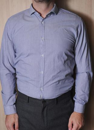 Рубашка cedarwood state