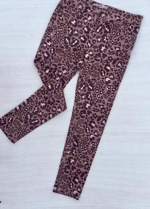 Леопардовые джинсы скинни,джеггинсы,скины звериный принт