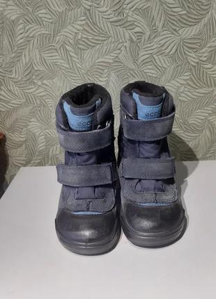 Детские ботинки кожаные сапожки ecco