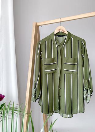Оливкова блуза в полоску