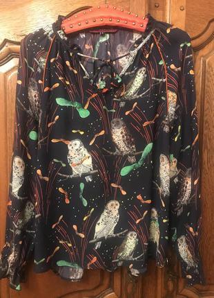 Блузка в принт совы 🦉