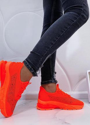 Яркие кроссы