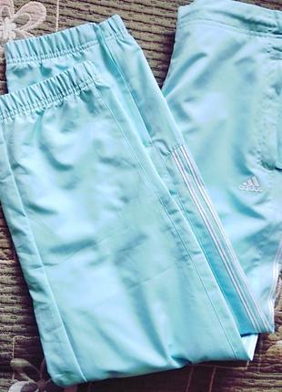 #adidas # спорт # штаны #брюки #бюрюзовый #оригинал р16
