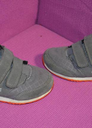 Модные кроссовки lacoste