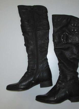 Сапоги кожаные с мехом, popushier, 25 см, сост. отличное!