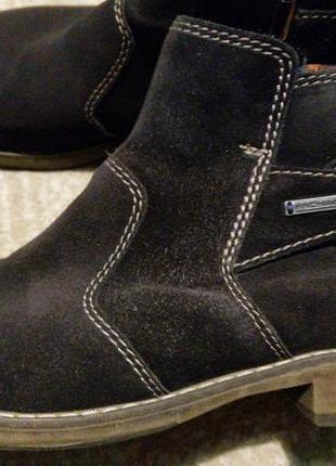 Стильные темно-синие замшевые ботинки pachini