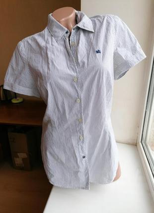 Шикарная качественная натуральная рубашка в полоску lerros (к078)