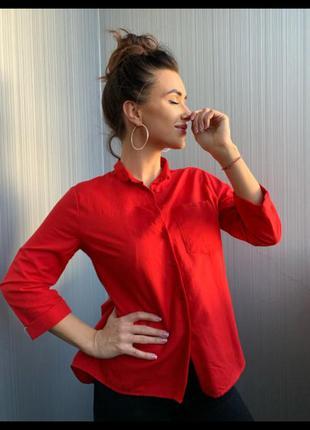 ⚡️топ продаж⚡️ рубашка  ткань: 💯 коттон 🇹🇷   размеры s . m . l.