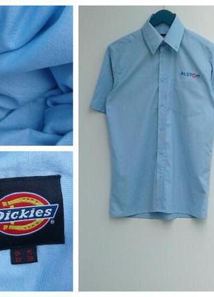 Нежно-голубая мужская рубашка