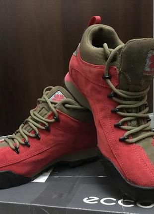 Кожаные водонепроницаемые кроссовки для кемпинга и туризма ros...