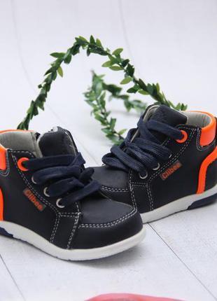 Ботинки clibee для мальчика
