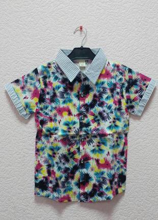 Нарядная летняя рубашка на мальчика стрейч котон 2,3 года