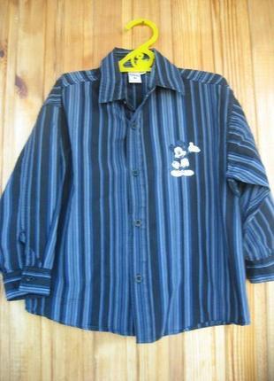 Фирменная рубашка C&A на 5 лет
