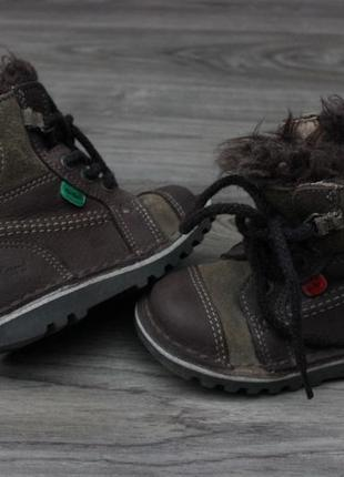 Ботинки kickers brown натур. кожа 24 размер