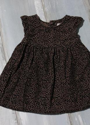 Платье леопардовое микро вельвет 6-9 мес next