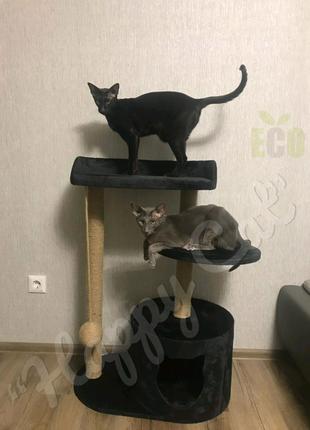Домик-когтеточка для 🐈: Koteika; kogtetochki_happy_cat;