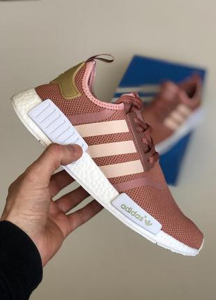 Крутые кроссовки  🍓 adidas nmd runner  🍓