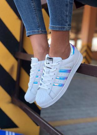 Стильные кроссовки 🔥 adidas superstar 🔥