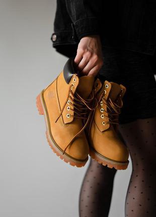 Стильные ботинки 🔥 timberland ginger 🔥 на меху